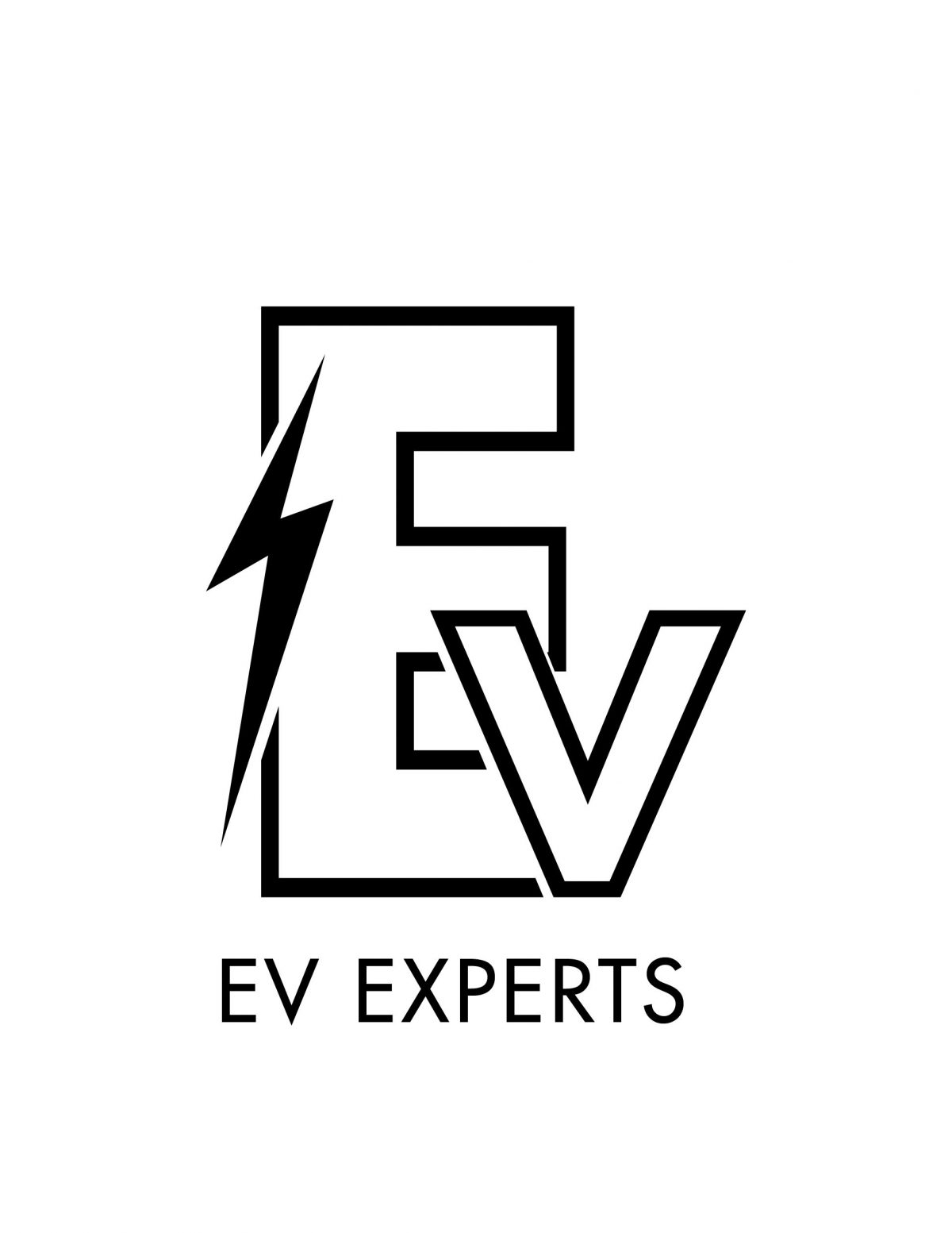 EV Experts Makes A Splash In The Electric Vehicle Market